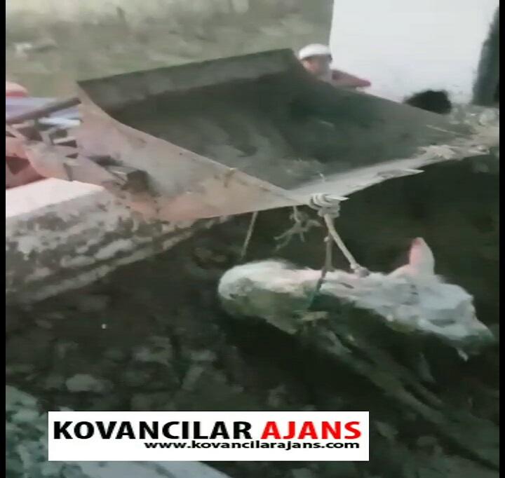 Havuza Düşen Merkebi Köylüler Kurtardı-VİDEO