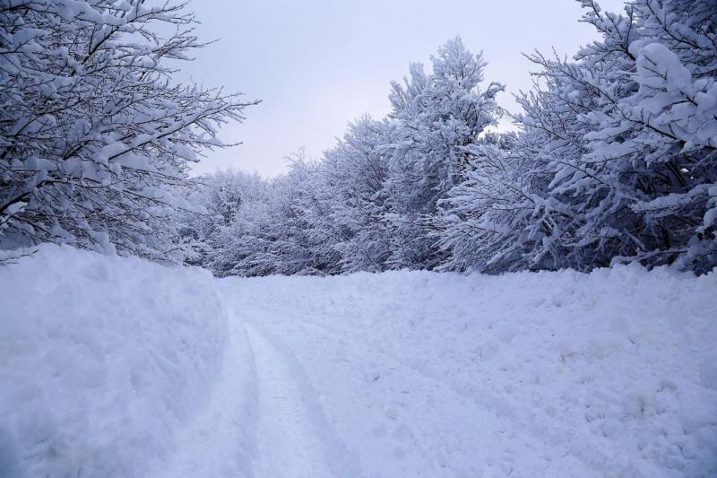 Meteorolojiden kuvvetli yağış, yoğun kar yağışı, kuvvetli rüzgâr ve çığ tehlikesi uyarısı