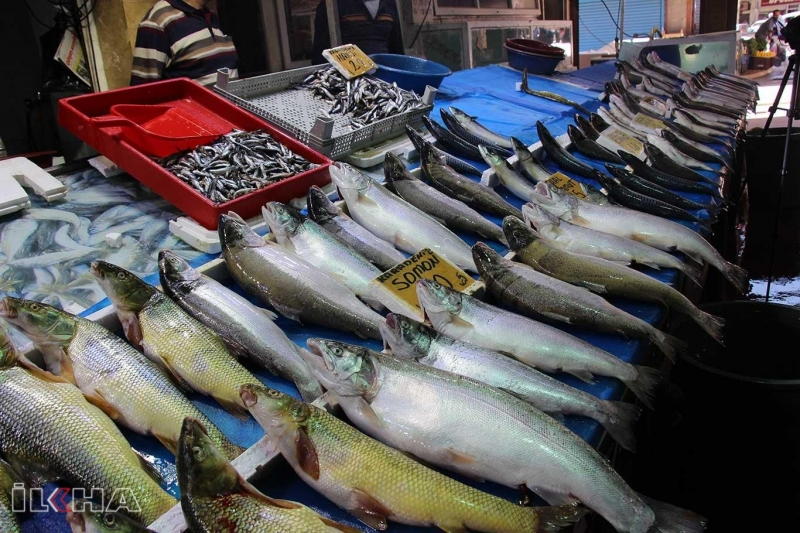 Yasağın sona ermesiyle balık tezgahlarındaki çeşitlilik arttı